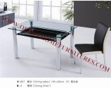 Glass Dining Table & Chair